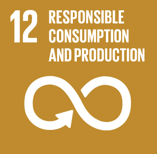 SBG_12_Sustainable_consumption_and_production